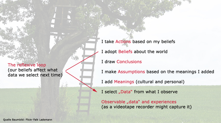 chris argyris ladder of inference